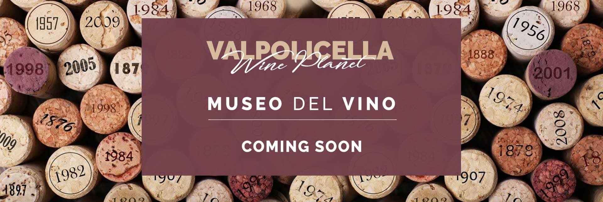 museo del vino consorzio valpolicella