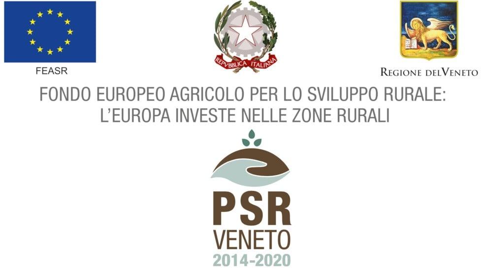 certificazione por del consorzio valpolicella per la tutela dei vini